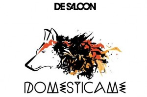 de saloon domesticame